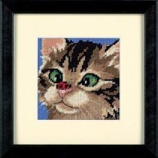 """Набор для вышивания гобеленом """"Косоглазый котенок//Cross-Eyed Kitty"""" DIMENSIONS 07206"""