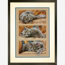 """Набор для вышивания крестом """"Кот Макс//Max the Cat"""" DIMENSIONS 70-35301"""